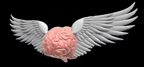 Flying-brain 2_alt
